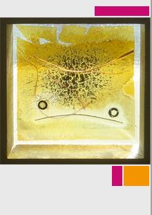 Jo Partridge Framed Glass